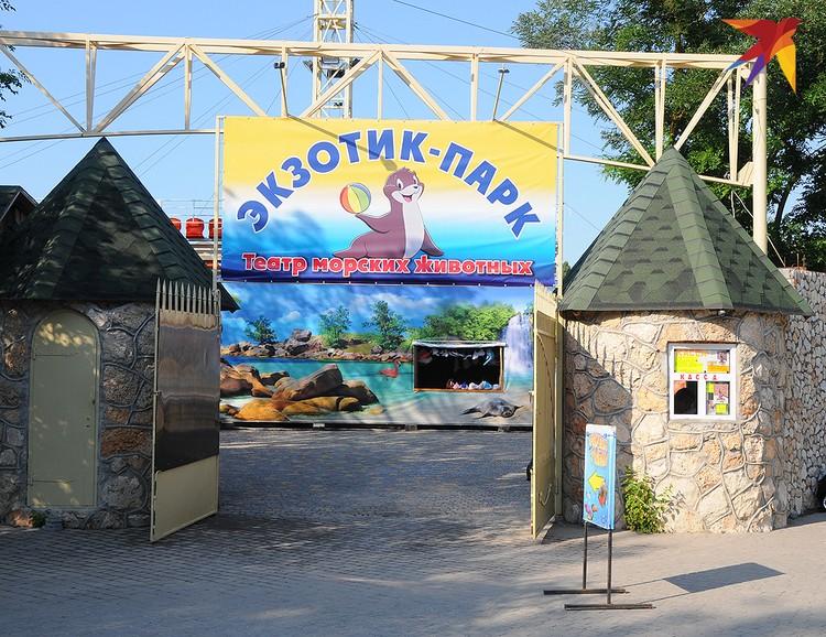 Еще один популярный аттракцион в Черноморском – театр морских животных «Экзотик-парк».