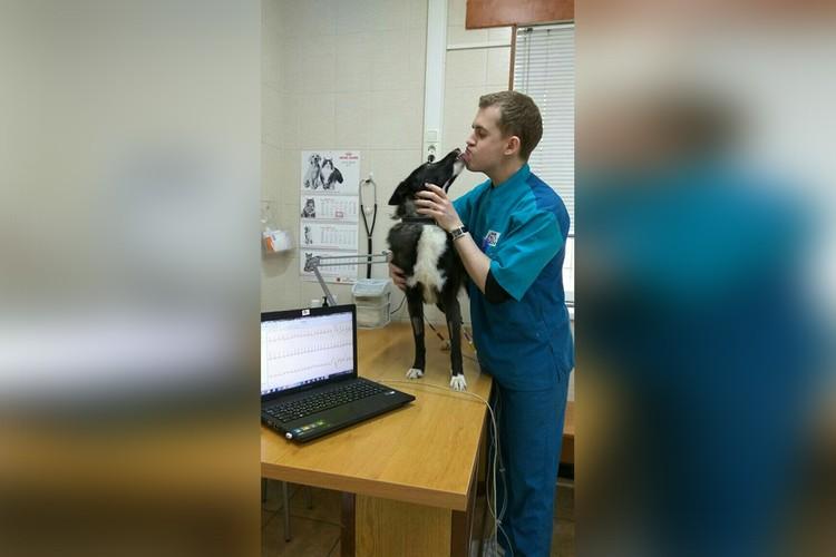 В клинике есть и постоянные клиенты, которые от счастья со всех лап, ласт и крыльев спешат к своим любимым врачам. Фото: vk.com/ver.drug