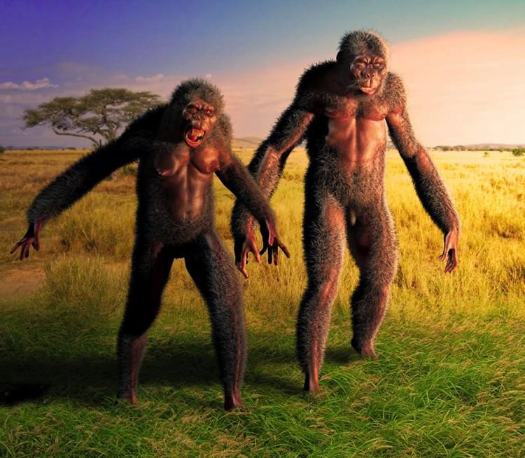 """Так могли выглядеть """"венгры"""", вышедшие погулять 5,7 миллионов лет назад на берег Средиземного моря."""
