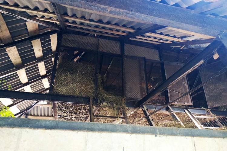 Заготовка сена в тени на сквозняке повыше