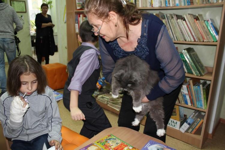 Кошка теперь живет среди книг и детского внимания.