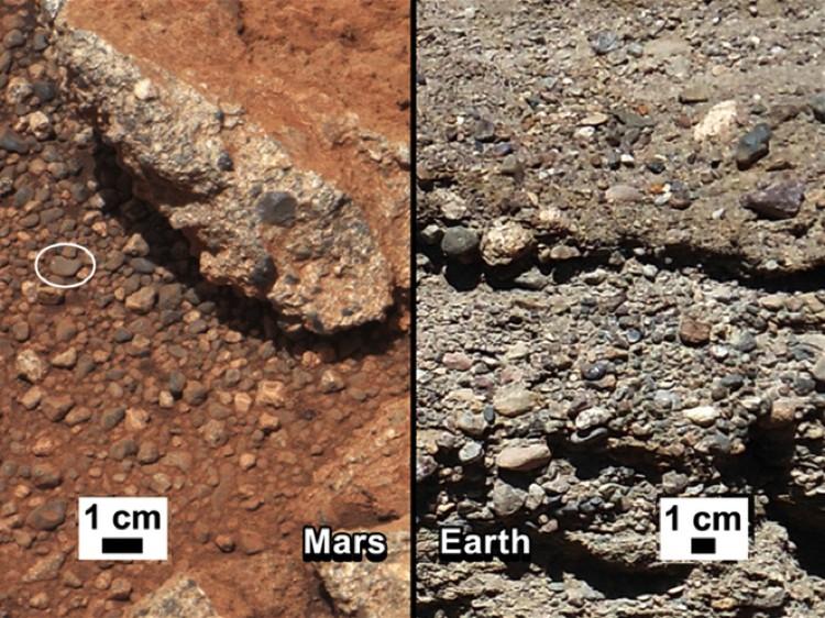 Галька - марсианская и земная.