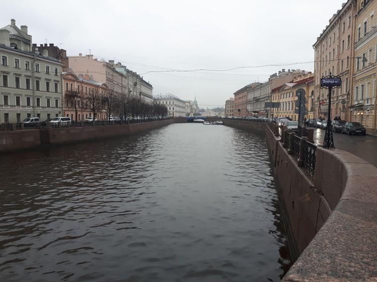 Останки тела Соколов хотел выкинуть в Мойку.