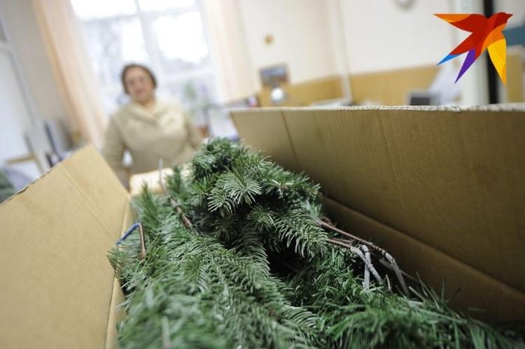Елки прибыли в коробках в разобранном виде.