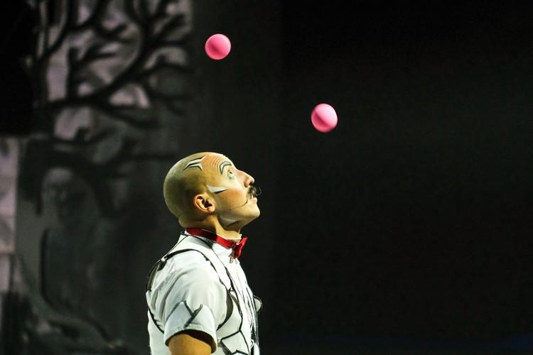 Цирк всегда ищет что-то новое и старается удивлять своих зрителей.