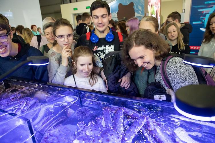 Аквариум с сахалинскими крабами вызвал живейший интерес у посетителей выставки. Фото предоставлено пресс-службой правительства Сахалинской области.