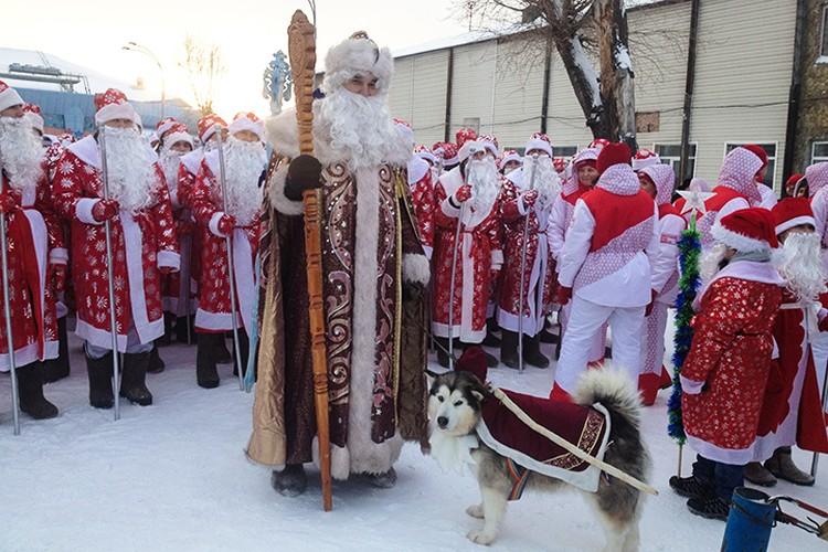 Главный Кузбасский Дед Мороз из «Томской писаницы» прибыл на парад вместе с мохнатыми обитателями музея-заповедника.