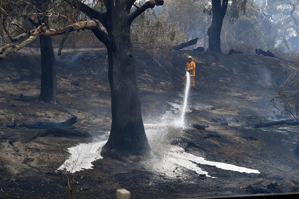 На помощь местным огнеборцам прибывают десятки их коллег из Канады, США и Новой Зеландии Фото: REUTERS