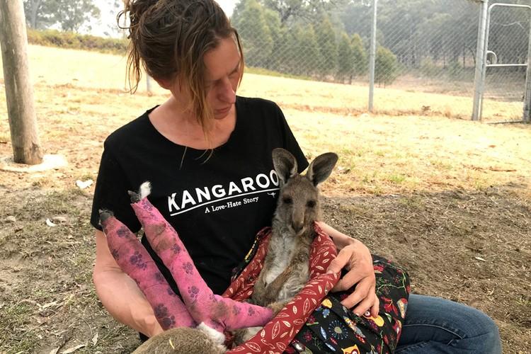 Этот кенгуру получил ожоги задних лап, убегая от огня.