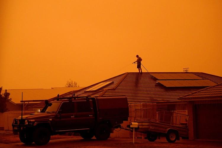 """В самых сложных регионах небо окрасилось в зловещий желтый цвет, напомнив некоторым фильм """"Бегущий по лезвию-2049"""", только в кино так выглядел город после атомного взрыва"""