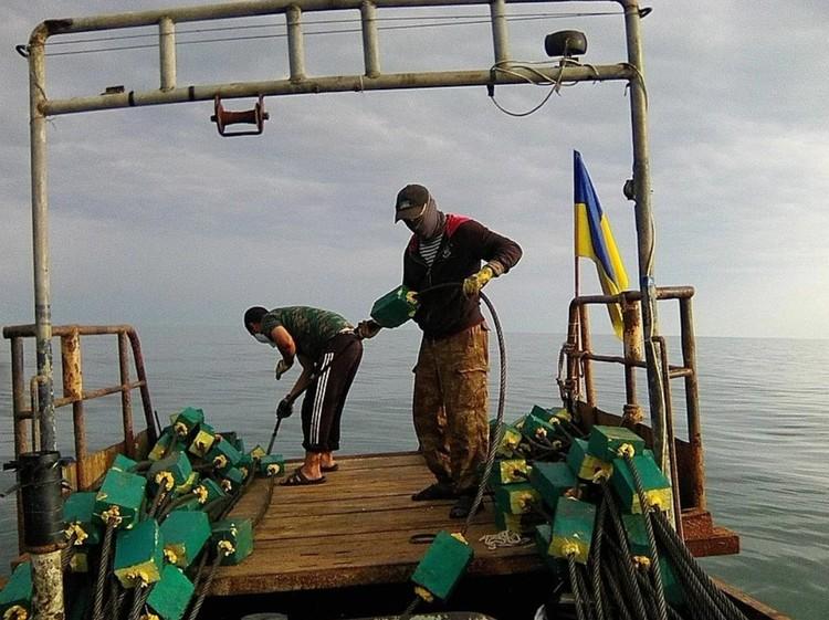 Стальные тросы хотели сбросить в Керченском проливе, чтобы остановить судоходство: тросы намотались бы на винты. Фото предоставлено несостоявшимся диверсантом
