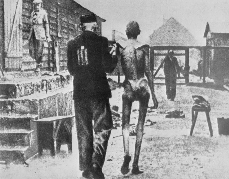 Узники фашистского концентрационного лагеря Аушвиц-Биркенау. Трофейный снимок/ТАСС