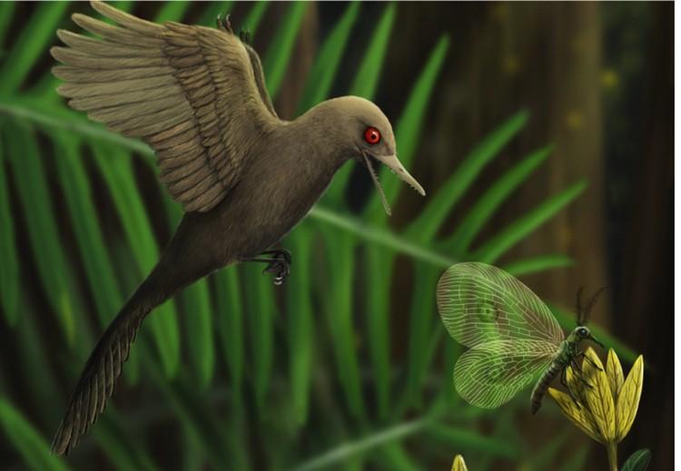 Палеонтологи решили, что обнаруженный динозавр летал. Как колибри.