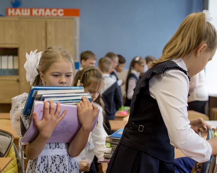 Больше всего мамы и папы учеников недовольны тем, как преподаются алгебра и геометрия, физика и иностранные языки.