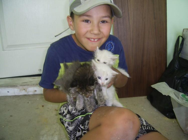 Матвей спасает животных