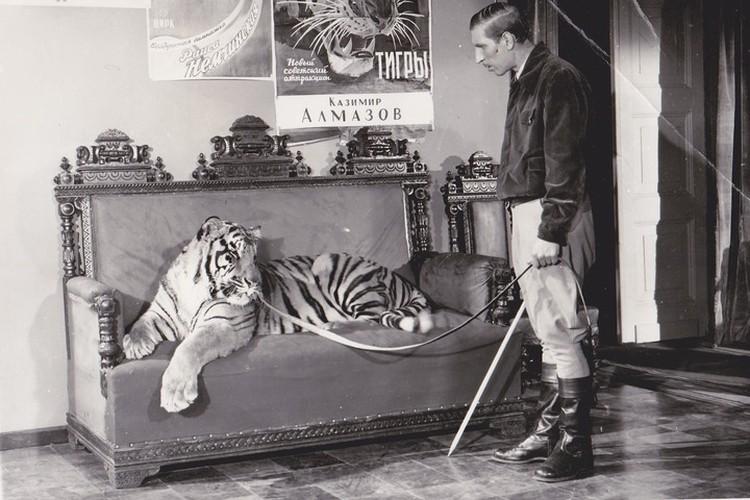 """Большинство сцен с тиграми - чудеса монтажа. Сейчас так уже не снимают. Фото: предоставлено киностудией """"Ленфильм"""""""