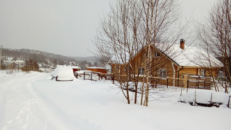 Анья тоже решила перебираться из Москвы, она построила здесь дом, красивый, деревянный сруб.
