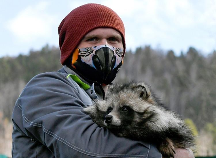 Зоолог парка Евгений Петрусев и прирученная енотовидная собака по кличке Мотя