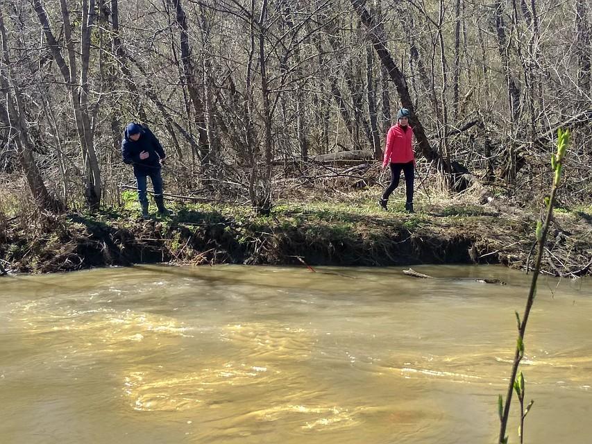 """В лесу много разлившихся ручьев и диких зверей. Фото: """"Лиза Алерт"""""""