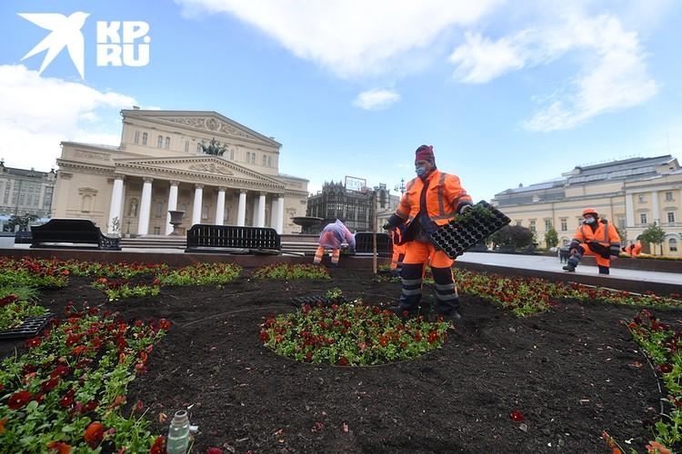 К общественным работам относятся, например, озеленение территорий