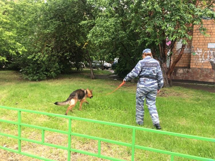 Подключены все оперативные службы. Фото: ГУ МВД России по Красноярскому краю.