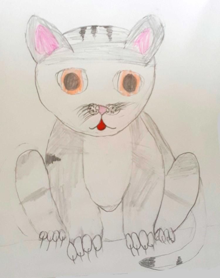 Кошка Пуша Сони Соколовой.