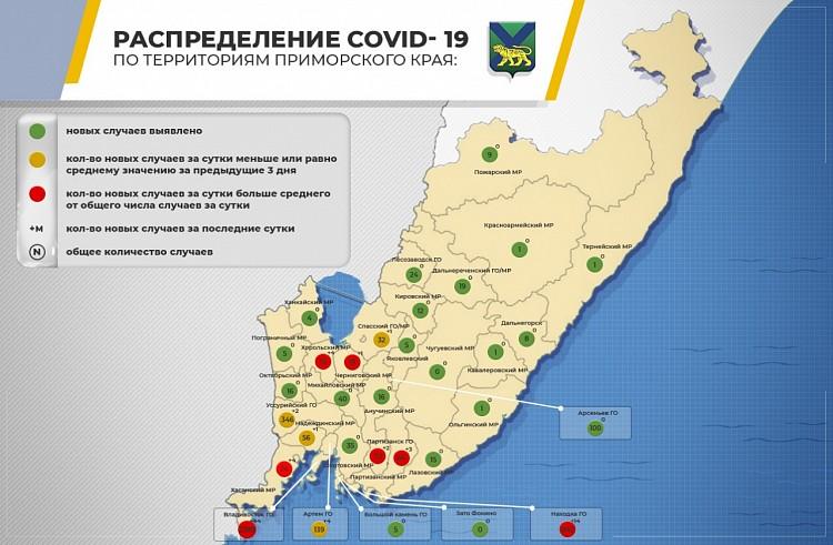 Инфографика распространения COVID-19 в Приморье