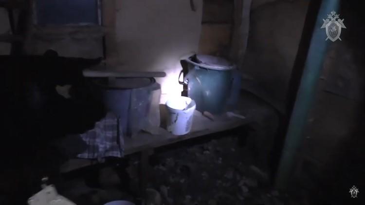Обвиняемая сама показала, что находится в ее сарае. Фото: кадр из видео СК России.