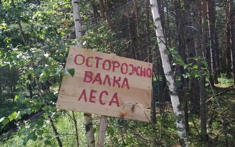 Фото: vk.com/1oomestomska