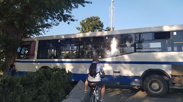 Если бы не дерево, то автобус бы вынесло на пешеходную зону