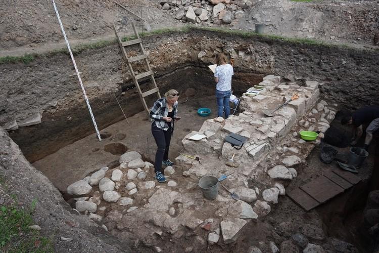 Археологи надеются, что они раскроют древний памятник целиком. Фото: novgorodmuseum.ru