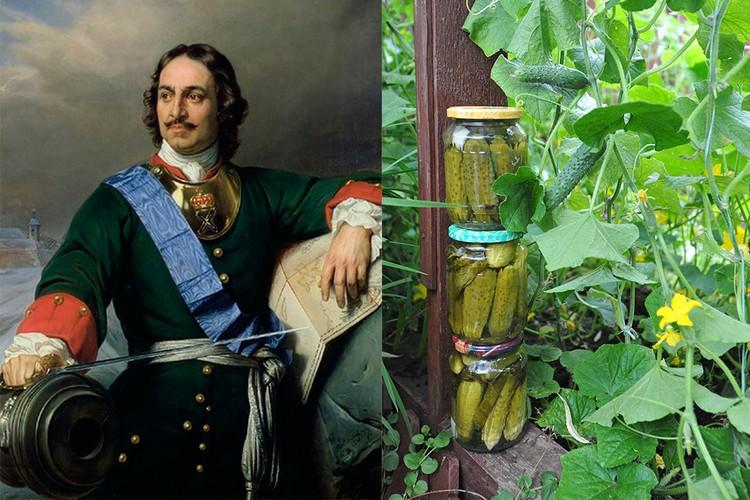 Государь-император Петр I сильно любил соленые огурчики - а вот, например, рыбу не переносил на дух. Фото: Википедия