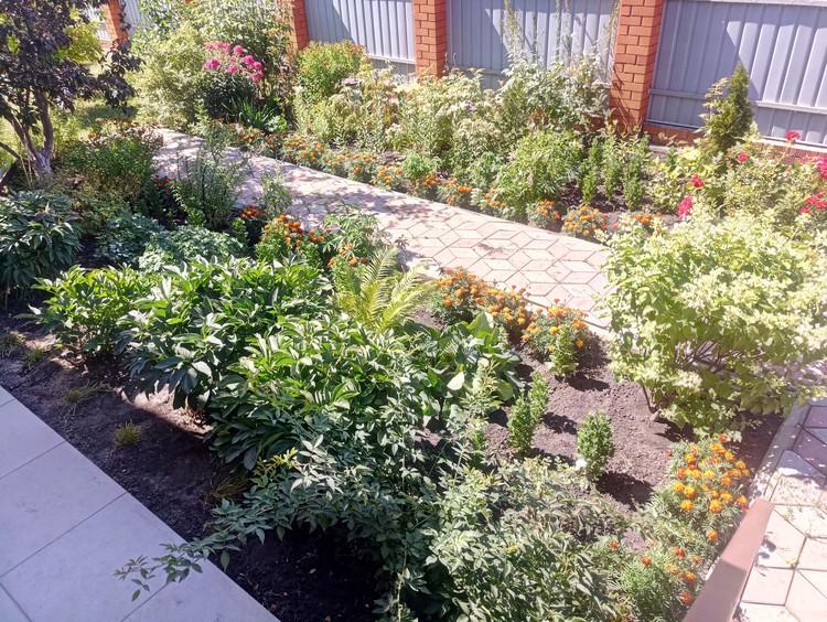 Перед домом Ольга Ивановна высаживает цветы, их много по всему огороду