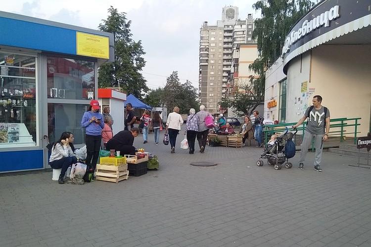 Садоводы расположились возле дома Кирова, 1Б.