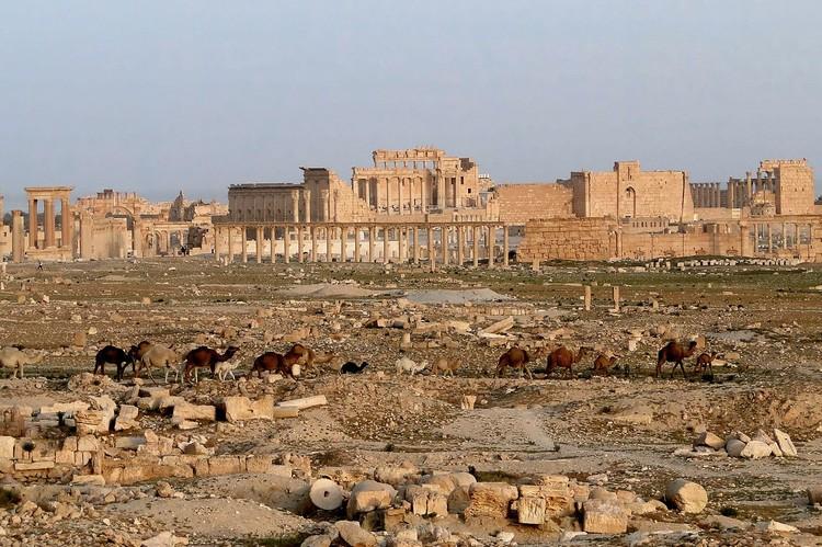 Так выглядела разрушенная Пальмира — автор фото Bernard Gagnon