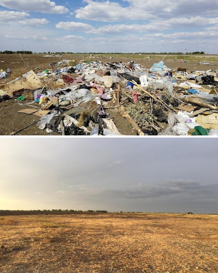 Лесополоса и поле были завалены пластиком, ветошью и другим мусором. Сейчас территория полностью очищена.