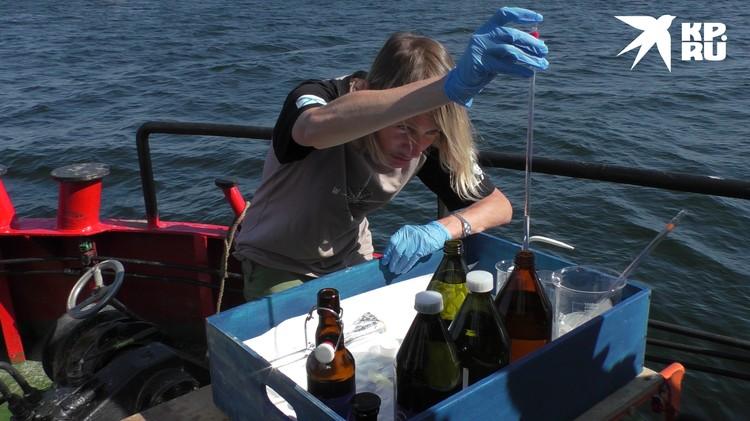 Узнать, насколько опасен танкер, помогут лабораторные исследования