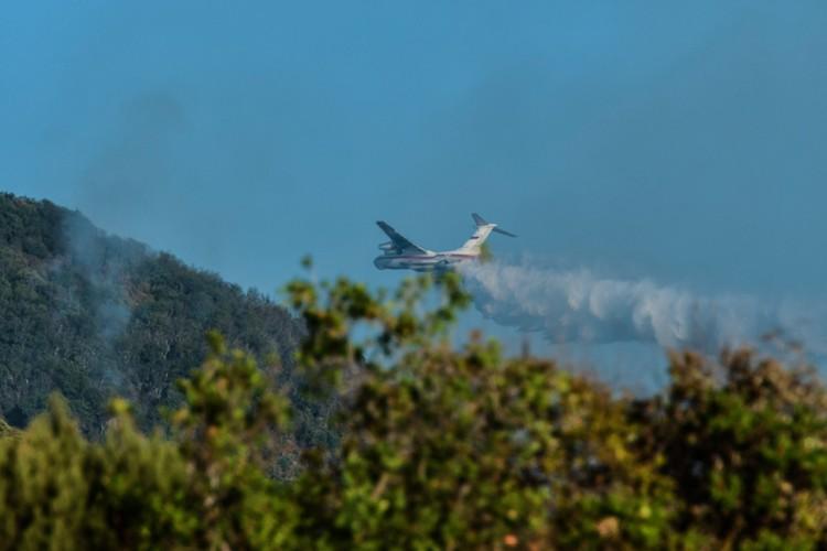 Бе-200 сделал уже десятки вылетов над Утришем
