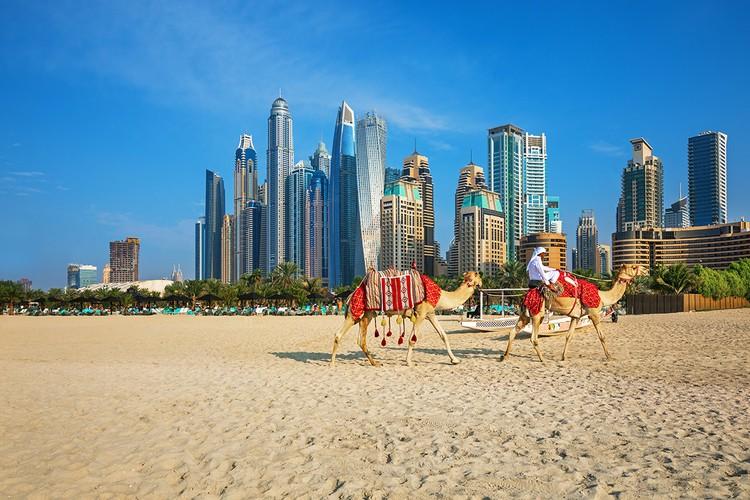 В Дубай и на Мальдивы правительство разрешило летать дважды в неделю, в Каир - 3 раза.