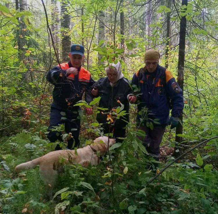 Потерявшуюся в лесу бабушку спасли под Ижевском Фото: МЧС России по Удмуртии