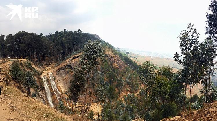 Такие же зелёные холмы Африки когда-то вдохновляли самого Хемингуэя