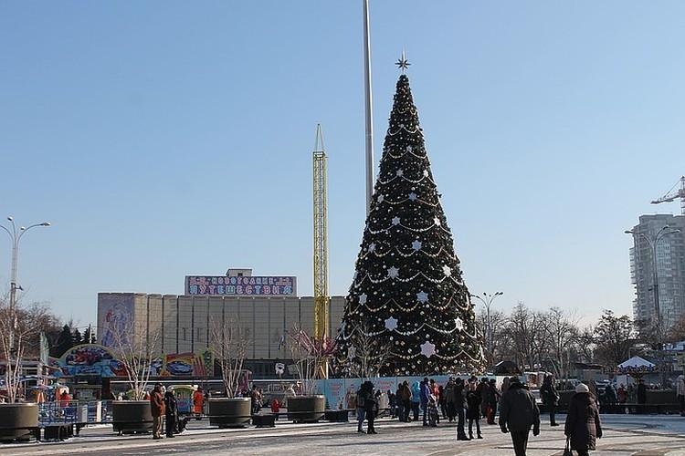 Дизайн главной городской елки раскритиковали. Фото: krd.ru