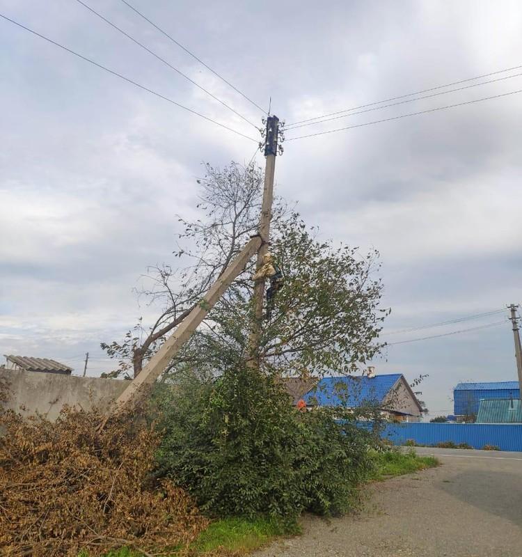В крае работают 32 сетевых энергокомпании, все они ощутили на себе силу и последствия тайфуна