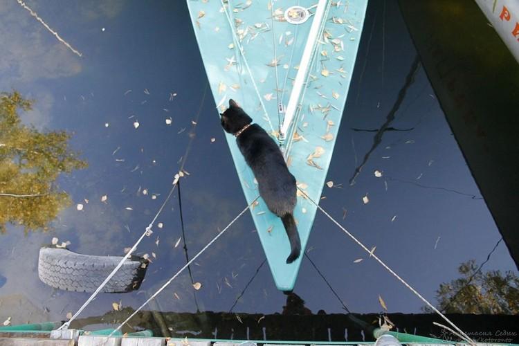 Осенью и зимой Боцман скучает по яхтам. Фото: личный архив героя