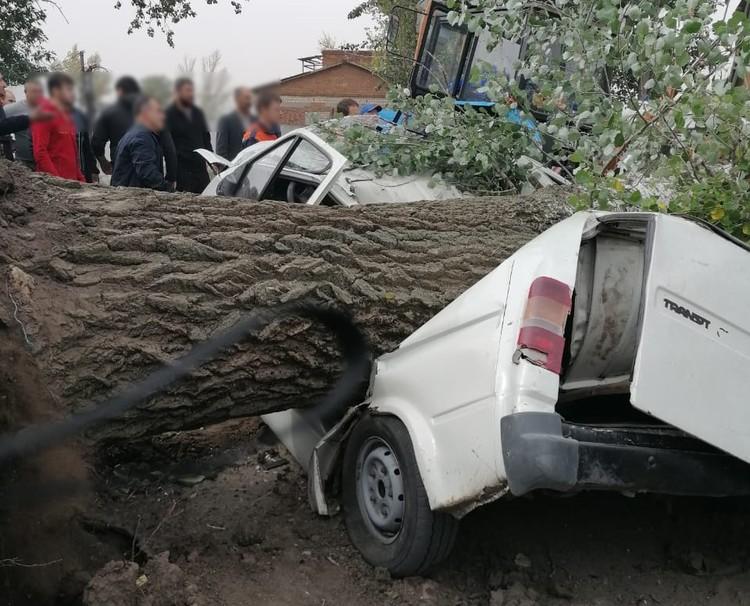 В машине находились два человека. Оба погибли. Фото: ГУ МЧС России по РО.