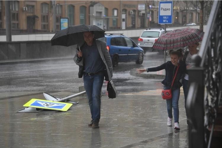 Местами прогнозируются порывы ветра до 16 — 24 метров в секунду.