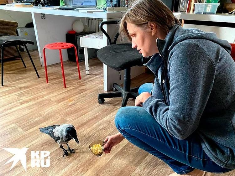 Татьяна Фалина с детства выхаживала дома различных животных.