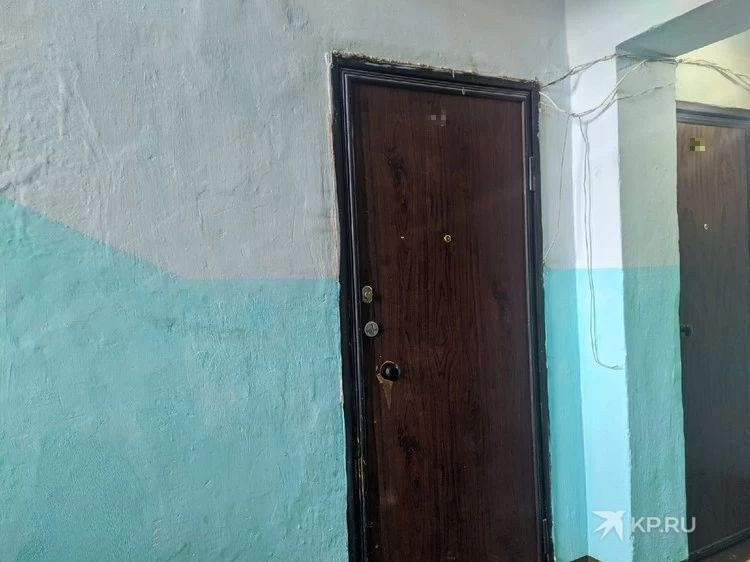 О том, что в квартире женщина морит голодом свою младшую дочь, соседи не знали.
