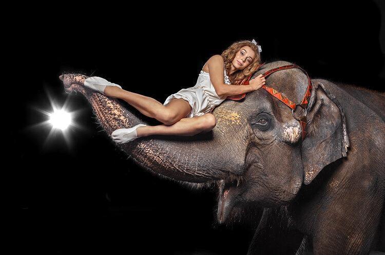 Артисты госкомпании за время пандемии подготовили новую программу «Девочка и слон», премьеру которой срывает частный прокатчик. Автор фото: Сергей СТРЕЛЕЦКИЙ