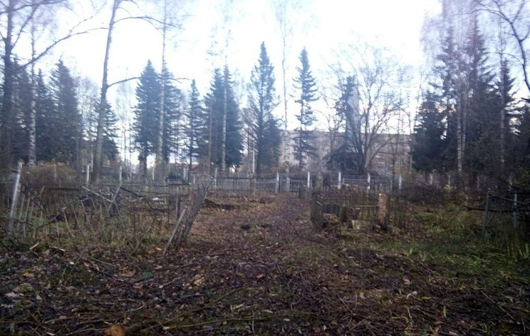 Фото: Настоящая Вологда ВКонтакте.